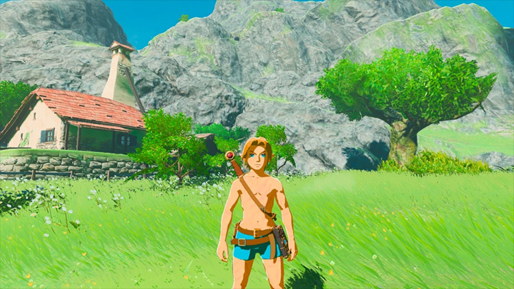 BotW: Second Wind Legend of Zelda mod screenshot