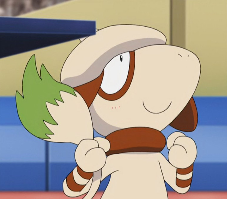 Smeargle Pokémon anime screenshot