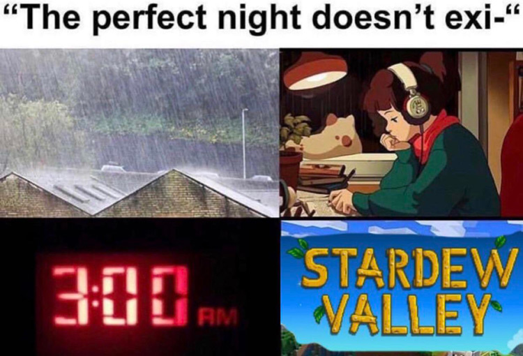 Stardew Valley perfect night doesnt exist