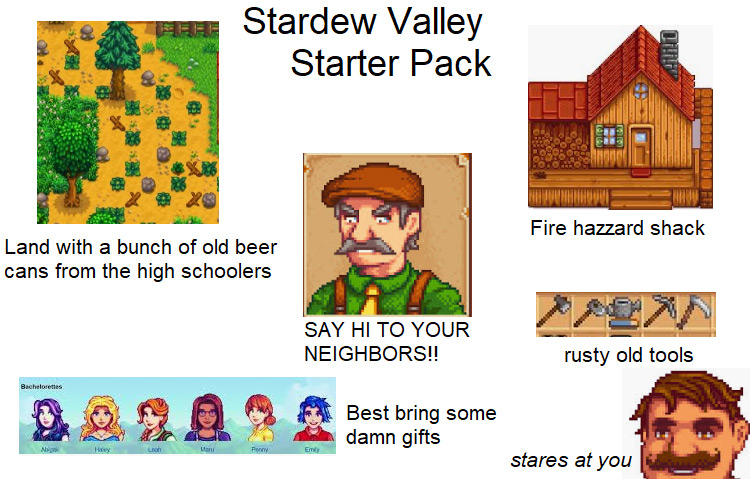 Stardew Valley Starter Pack Meme