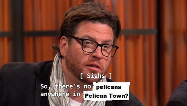 So theres no pelicans anywhere in Pelican Town?