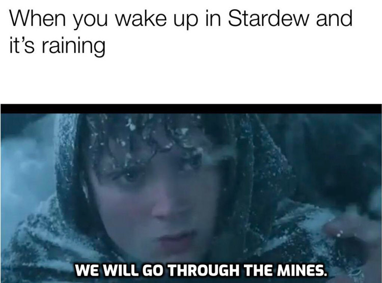 Wake up in Stardew and its raining meme