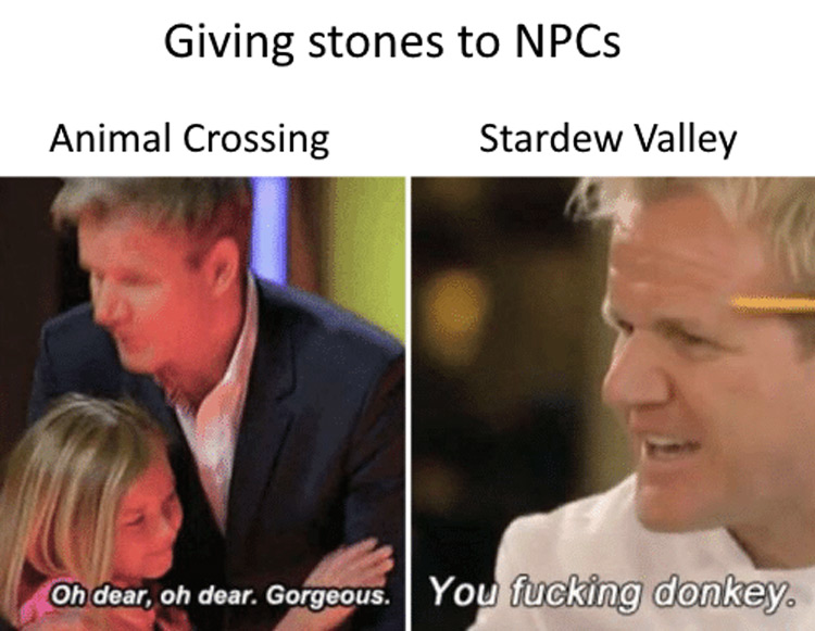 Giving stones to NPCs meme