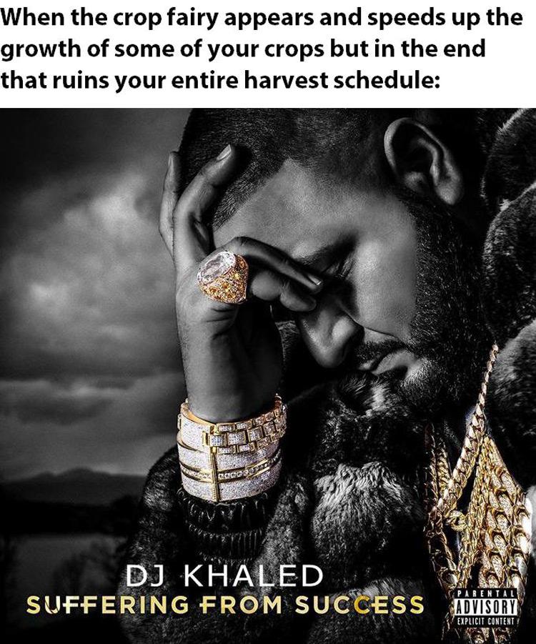 DK Khaled suffering Stardew meme