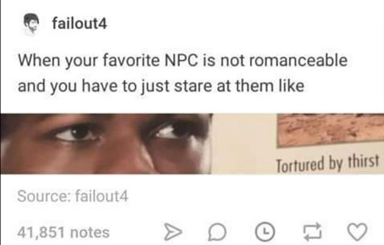 Favorite NPC is not romanceable meme