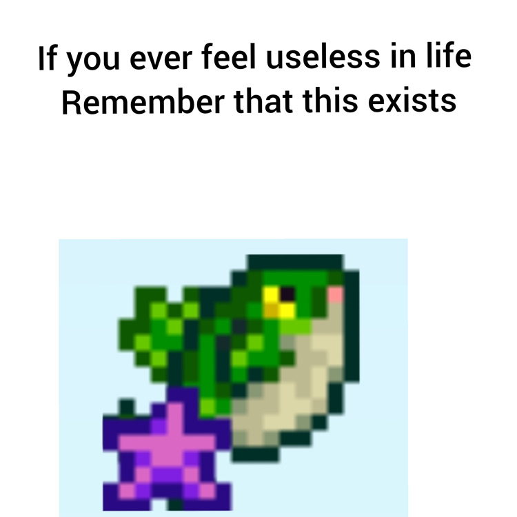 Useless fish Stardew meme