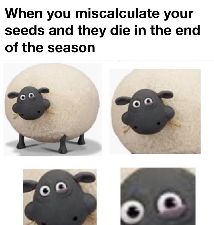 Miscalculate seeds end of season meme