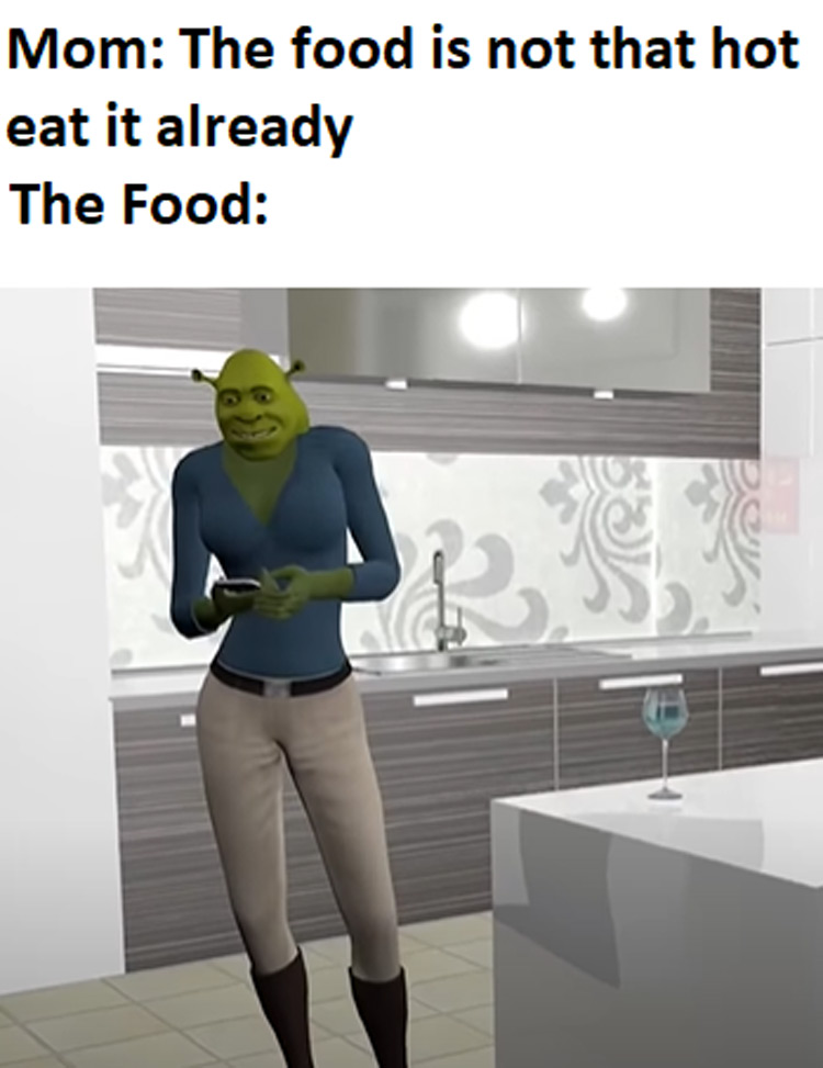 The food is not that hot meme