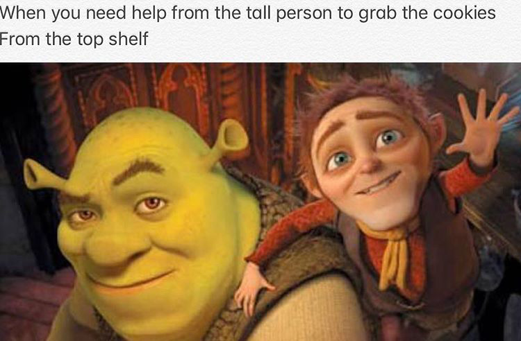 Need help from a tall person meme