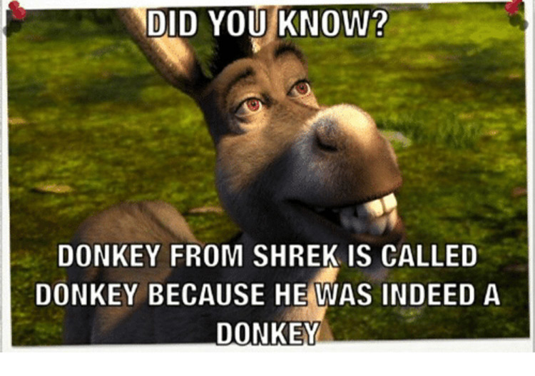 Did you know? Donkey was indeed a donkey meme
