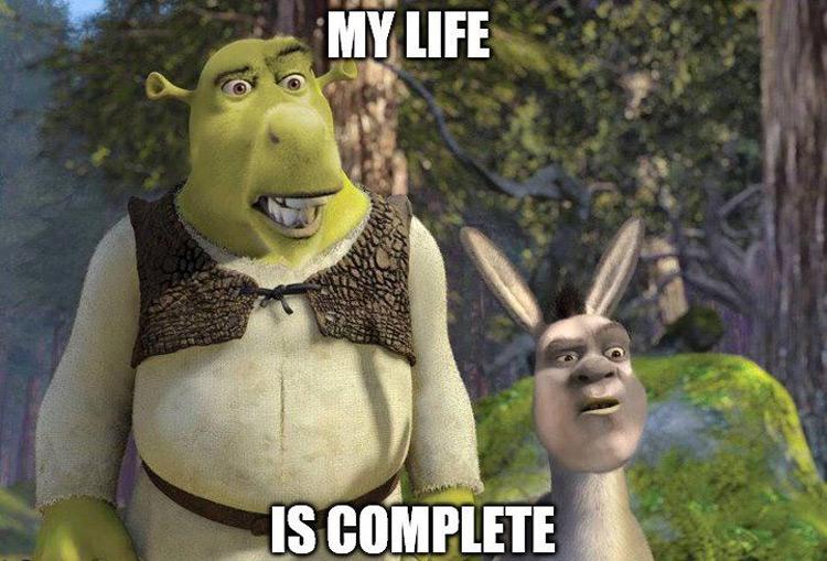 Donkey and Shrek Face Swap meme