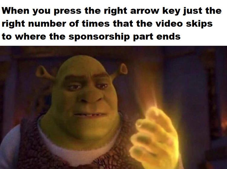 Right arrow key video skips meme