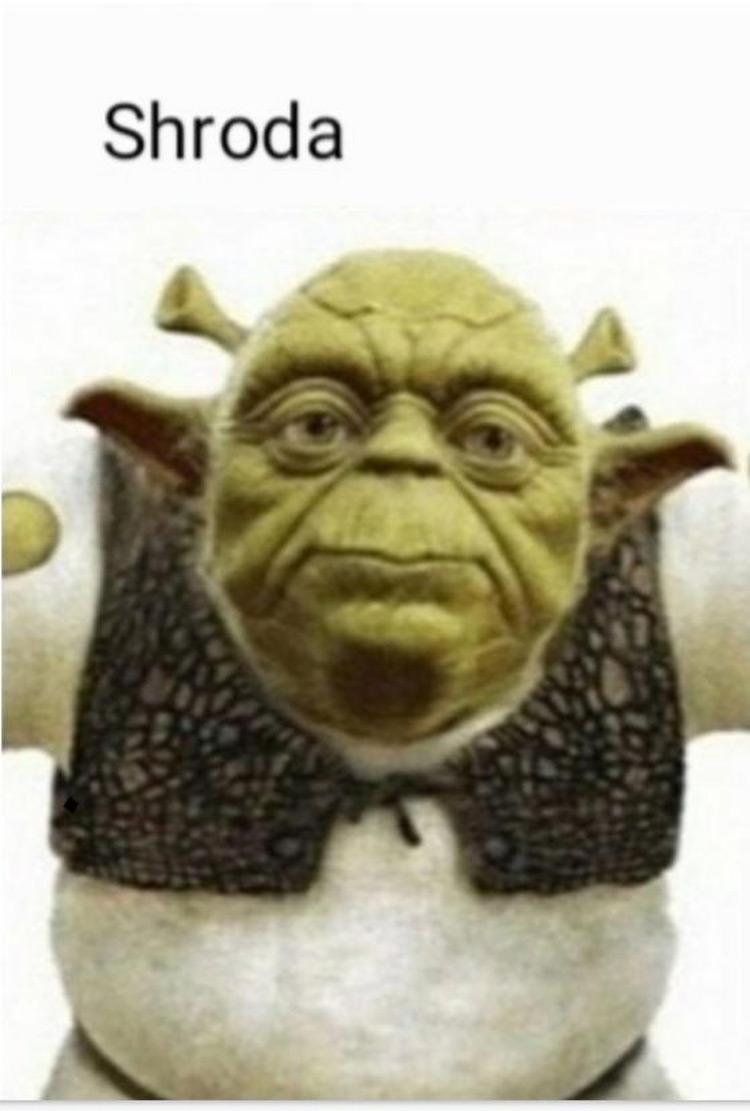 Shroda and Shrek Yoda meme