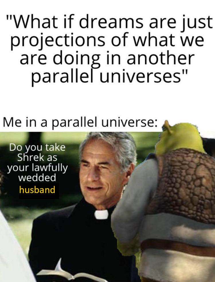 Do you take shrek as your lawfully wedded meme
