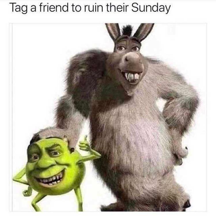 Tag a friend Donkey/Shrek and Mike Wazowski Monsters Inc Meme