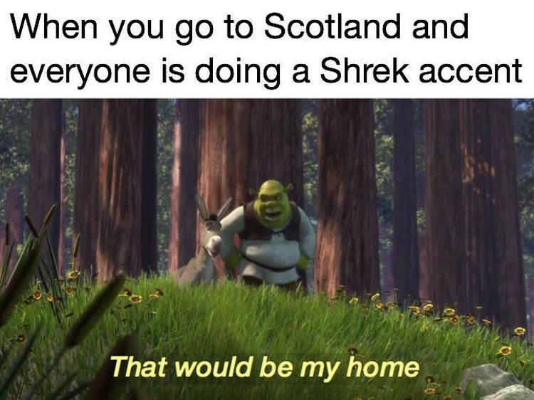 Shrek would be my home meme