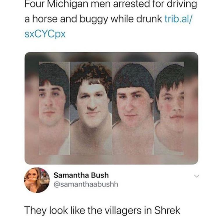 They look like Shrek villagers meme