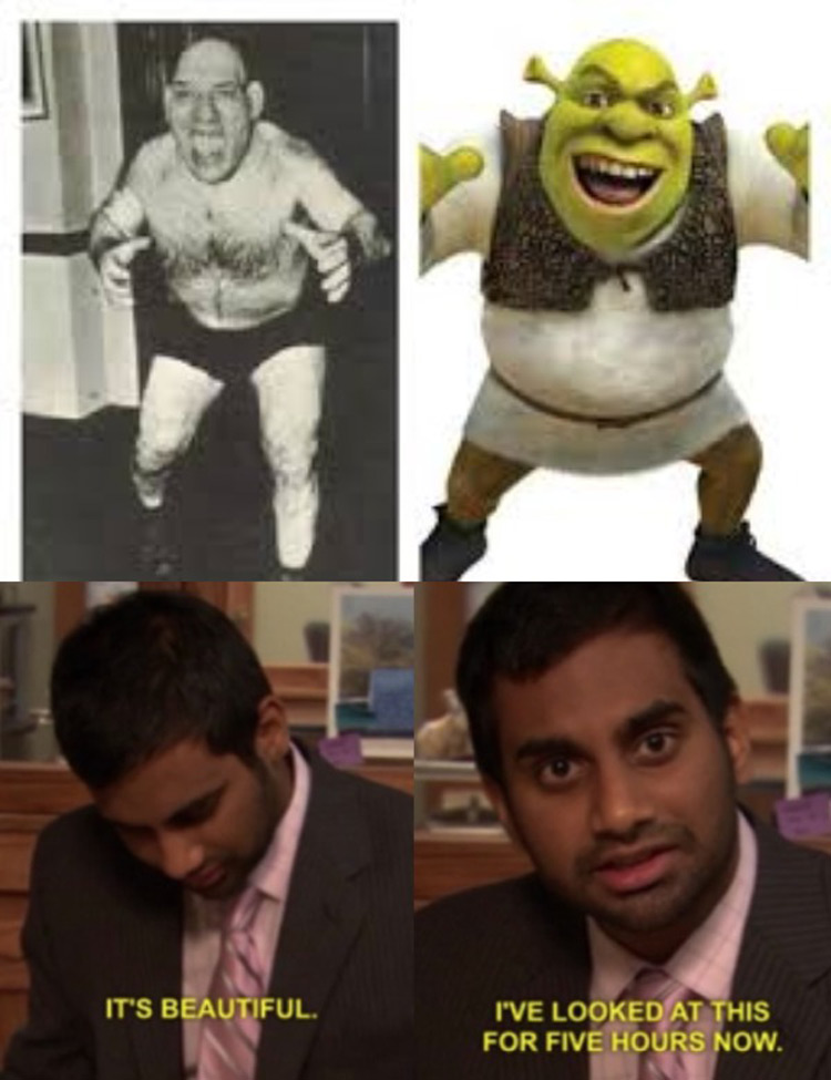Shrek and Aziz Ansari meme