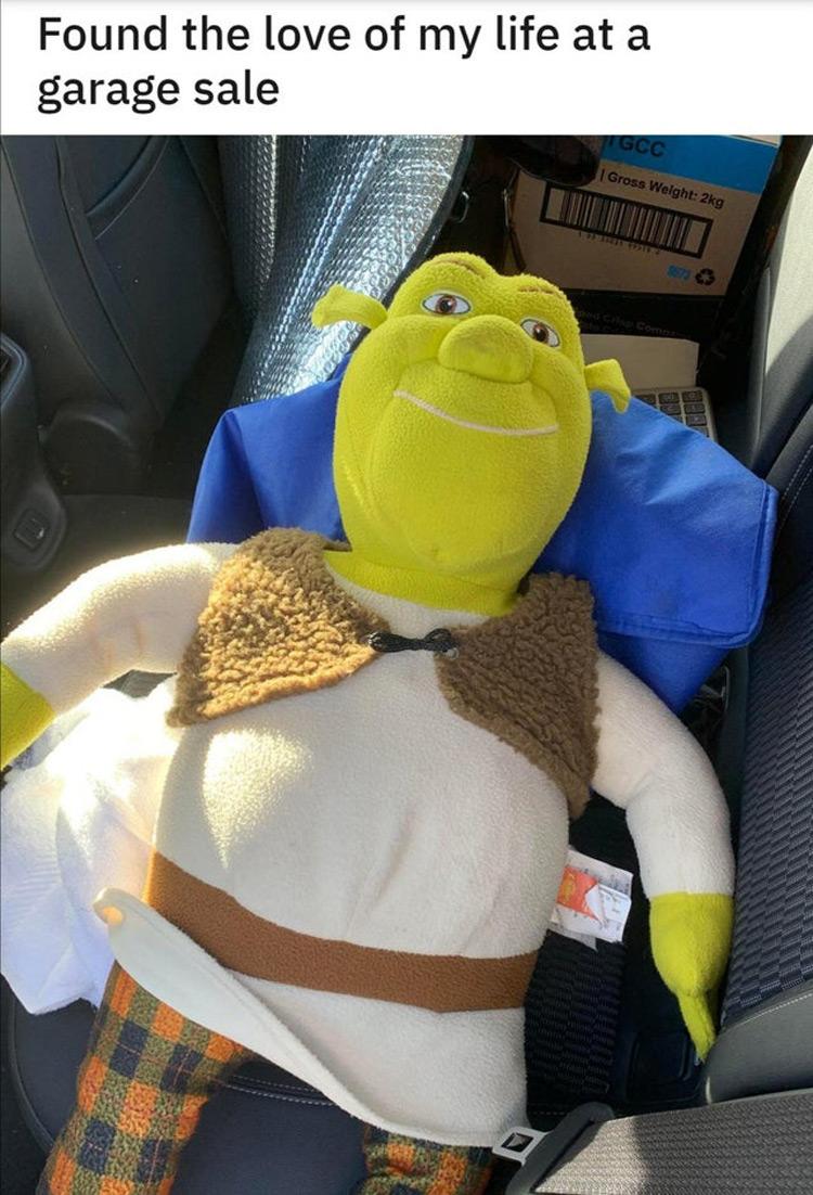 Found the love of my life, Shrek plushie meme