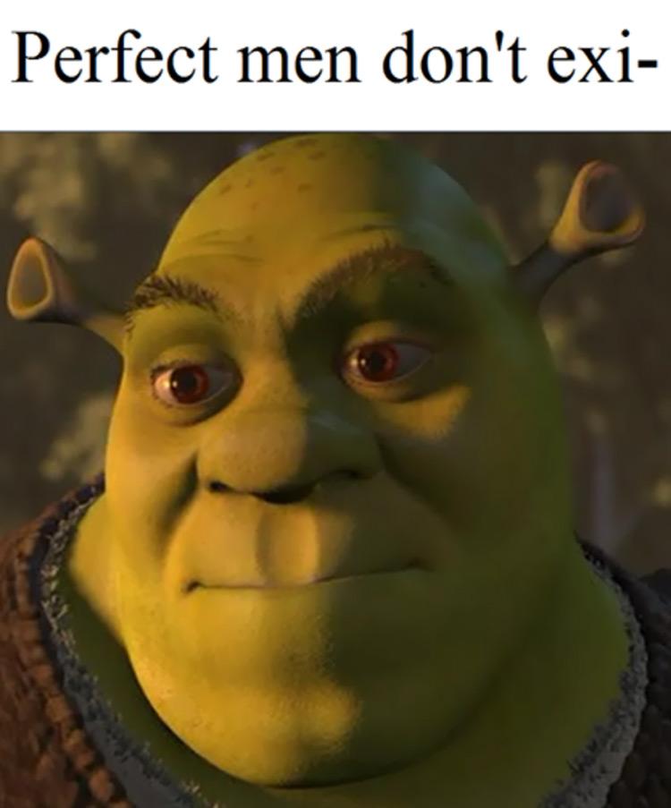 Perfect men dont exis-- shrek meme