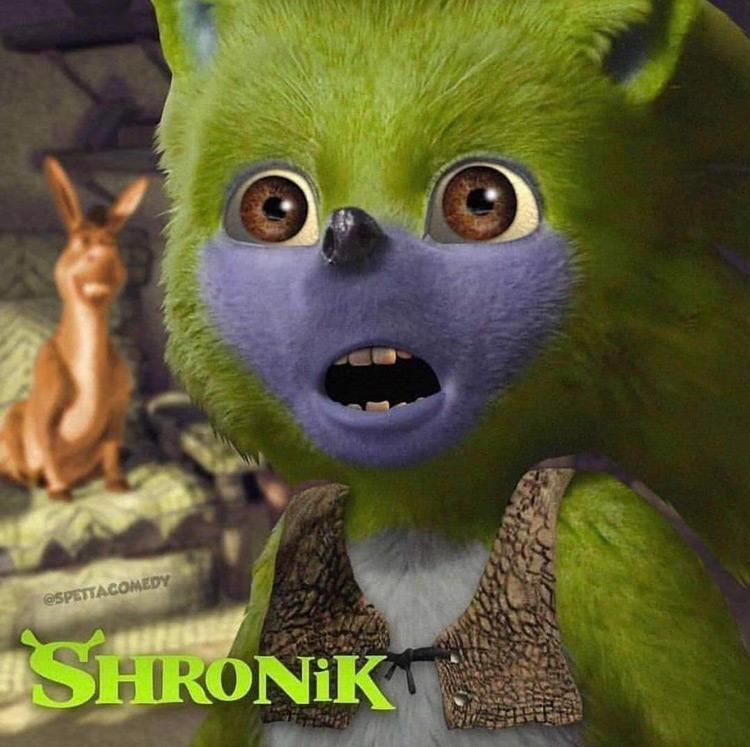 Shronik Sonic Shrek meme