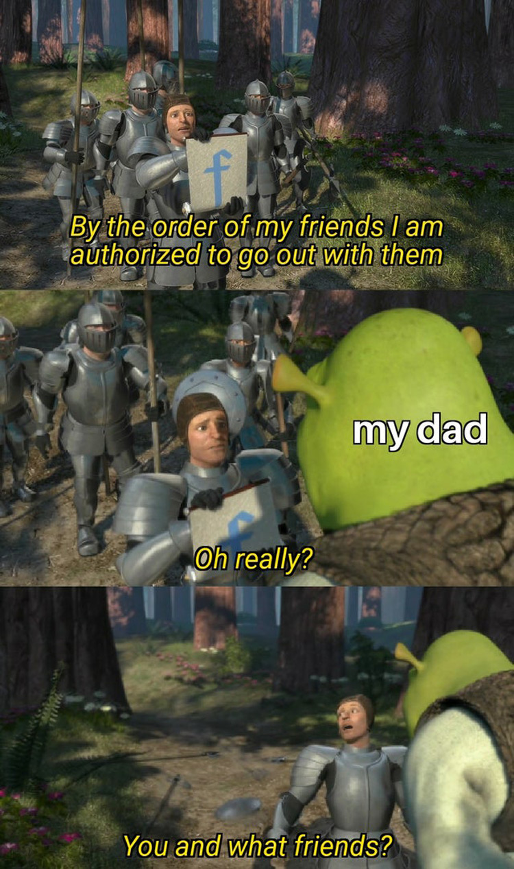 Shrek knights: You and what friends meme