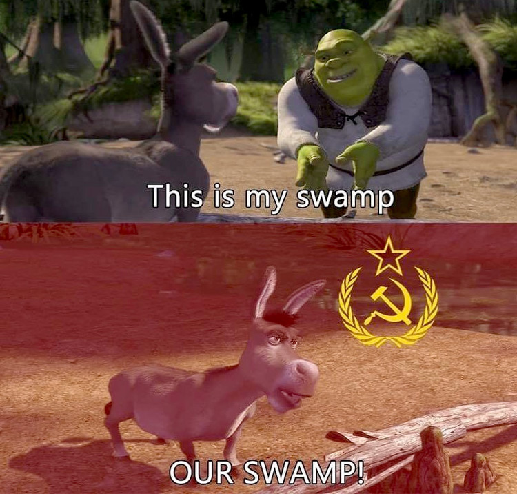 This is my swamp - our swamp meme