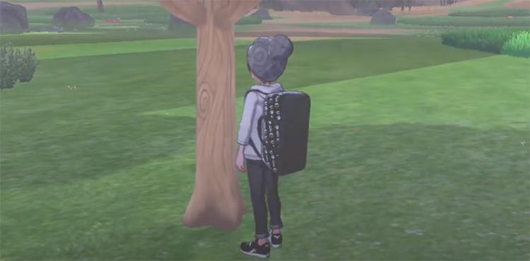 Berry Tree in Pokemon SwSh