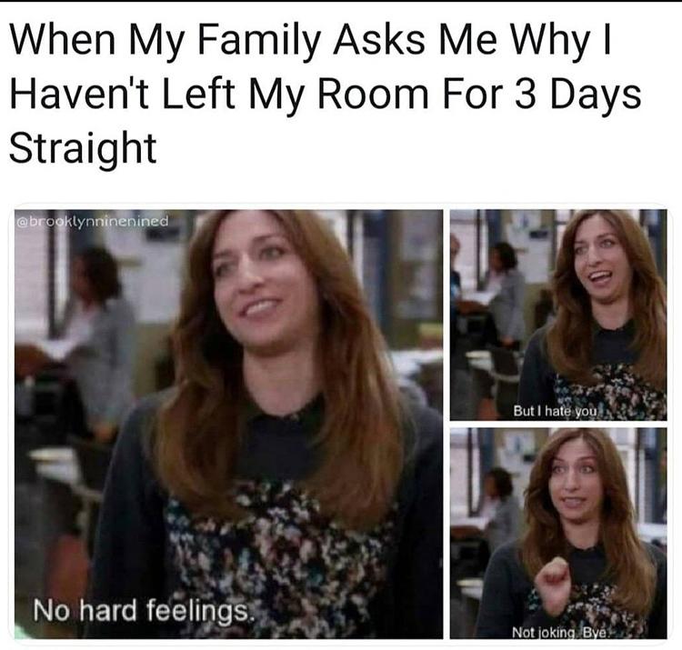 Gina hates family meme