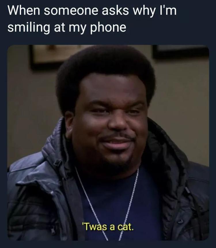 Twas a cat meme