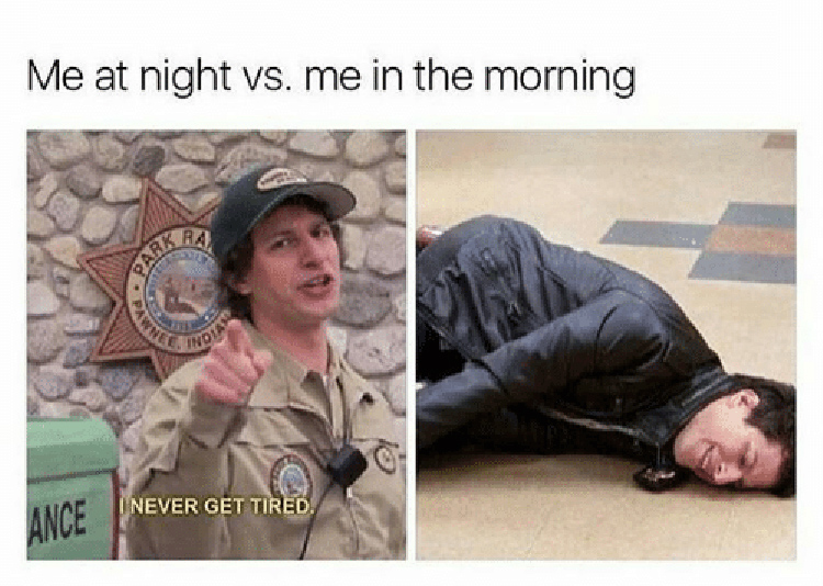 Staying up late meme