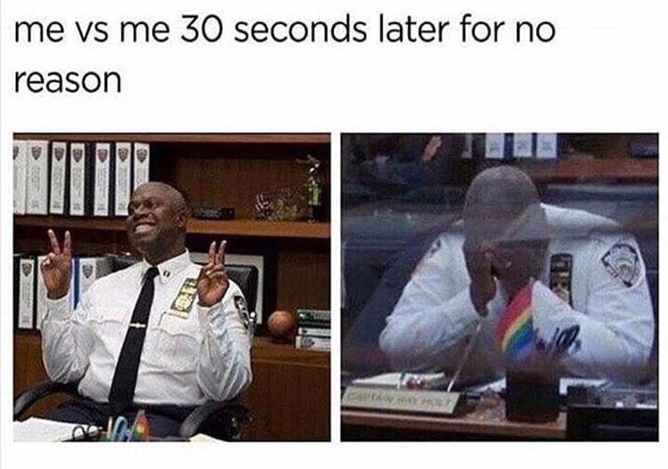 Captain Holt moods meme