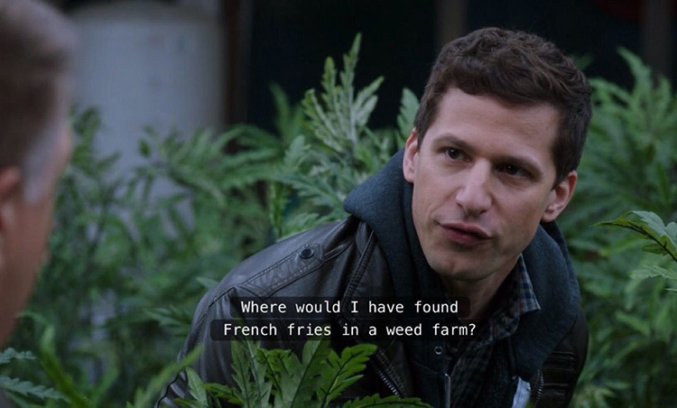 Jake Peralta where would I find french fries