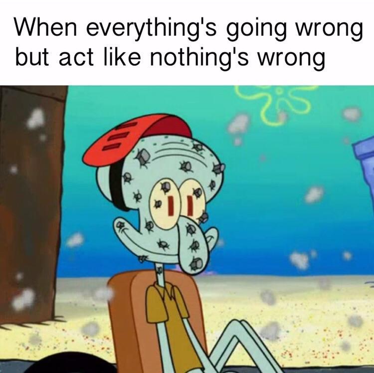 Pretending my life is fine meme
