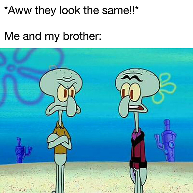 Twin brothers Squidward Squilliam meme