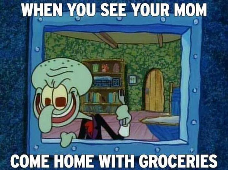 Mom has groceries meme