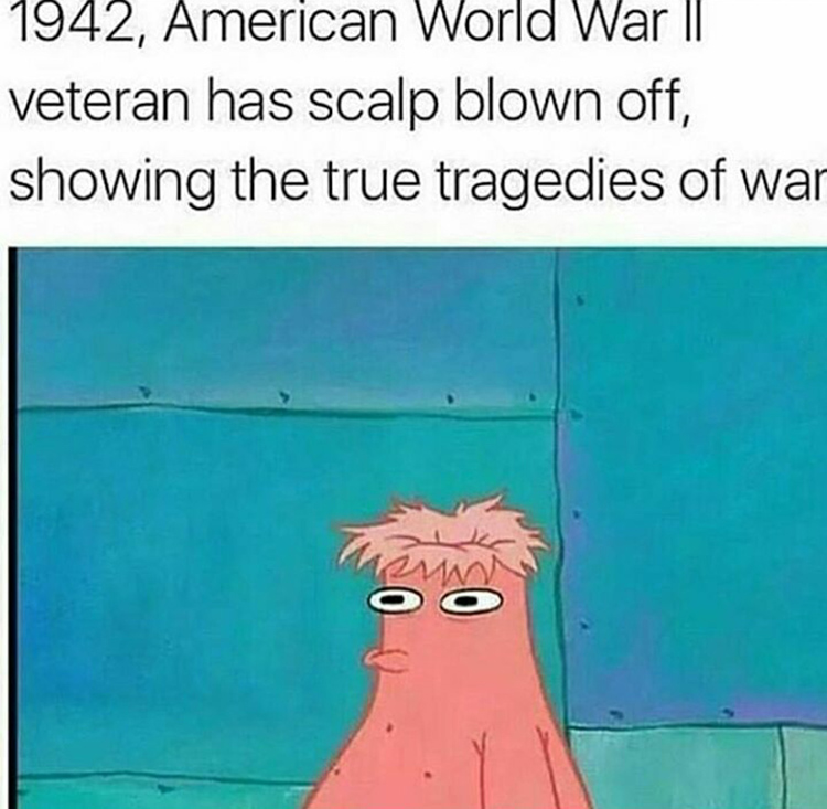 WW2 vet patrick meme