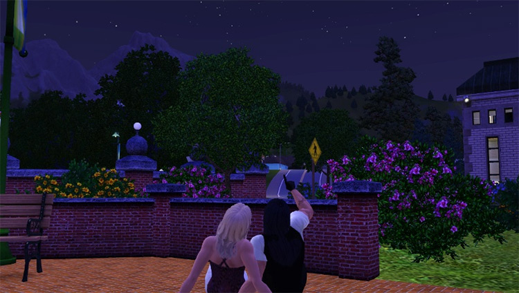 Retuned Attraction Mod Sims 3