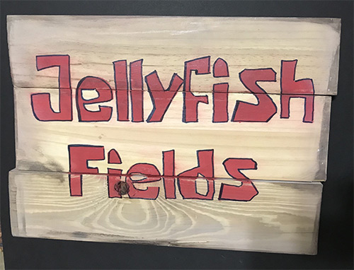 Real Jellyfish Fields sign made from wood, SpongeBob