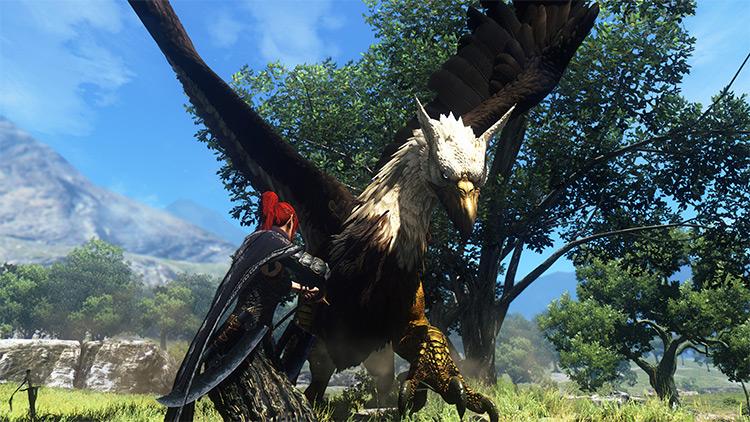 Envision ENB Dragon's Dogma: Dark Arisen Mod