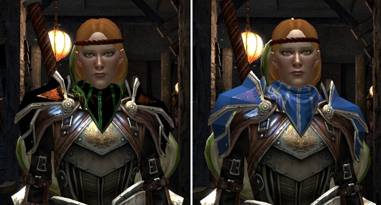 Diversified Follower Armors Dragon Age II Mod
