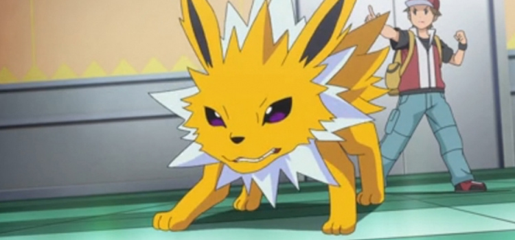 Jolteon in the anime