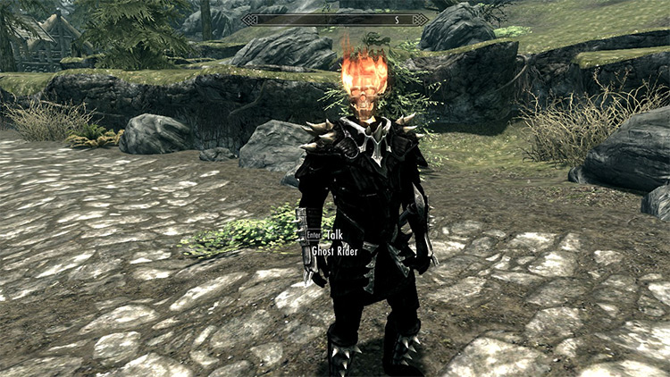 Ghost Rider Follower mod