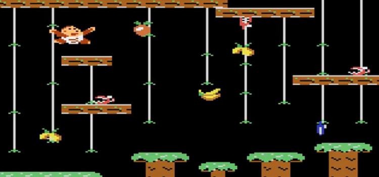 Donkey Kong Jr for Atari 7800