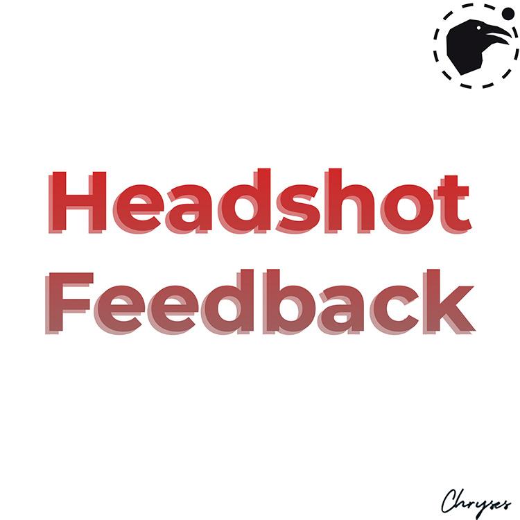 Headshot Feedback Ravenfield Mod