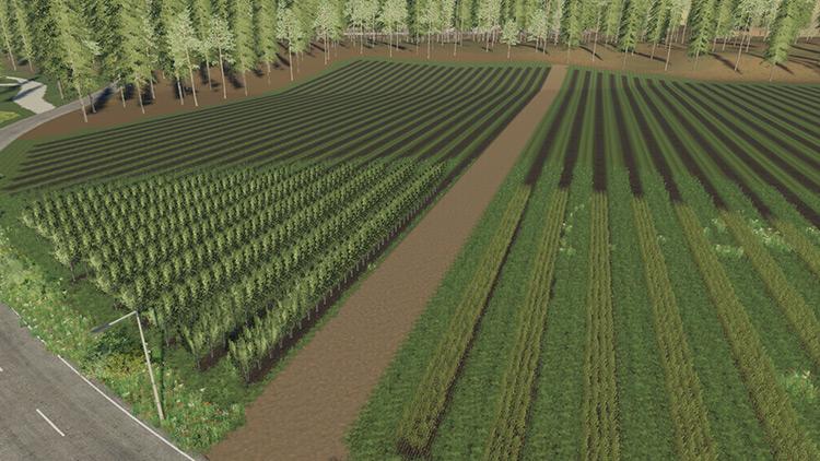 Ischia Farm FS19 Map Mod