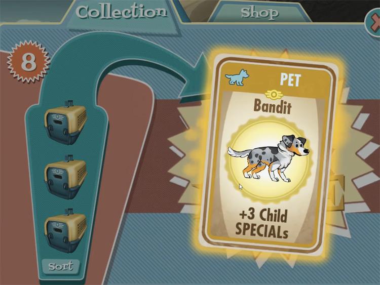 Bandit – Australian Shepherd from Fallout Shelter