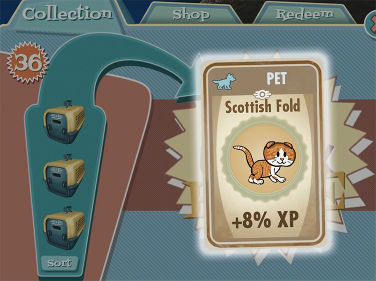 Ginger – Scottish Fold from Fallout Shelter