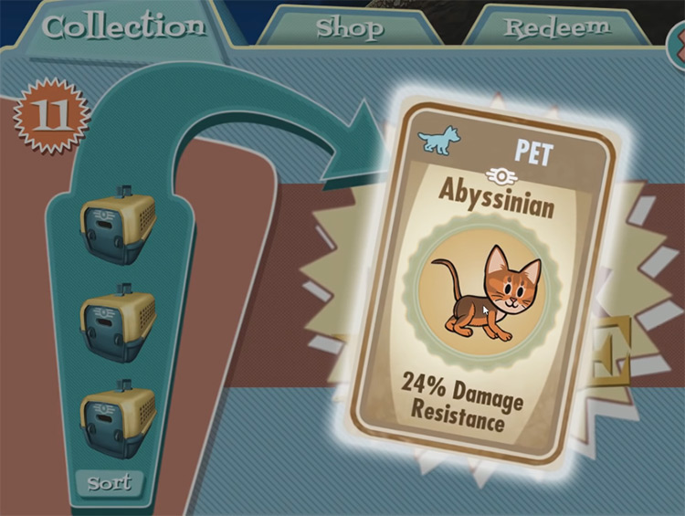 Zula – Abyssinian from Fallout Shelter