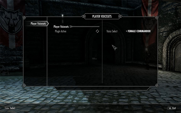 Player Voice Sets in Skyrim